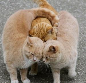 group-hug-e1324736447271