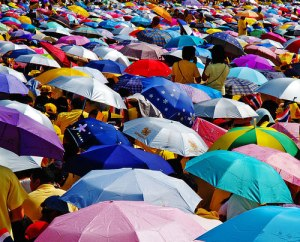 umbrella-mushroom-crowd-inspiration-photography